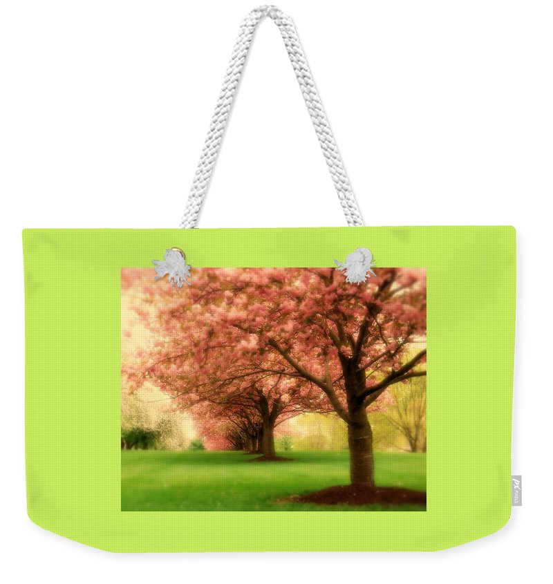 Cherry Blossom Trees Weekender Tote Bag featuring the photograph Trees In A Row by Angie Tirado
