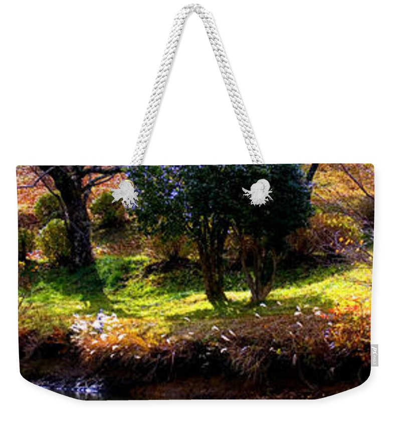 Swan Weekender Tote Bag featuring the photograph Trees In Japan 8 by George Cabig