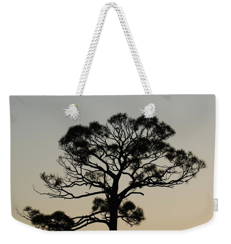 Tree Weekender Tote Bag featuring the photograph Trees In Sunset by Rob Hans