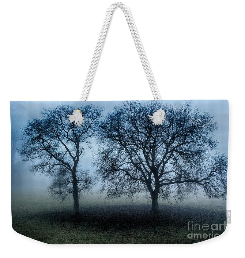 Trees Mist Weekender Tote Bag featuring the photograph Trees In The Mist by Brothers Beerens