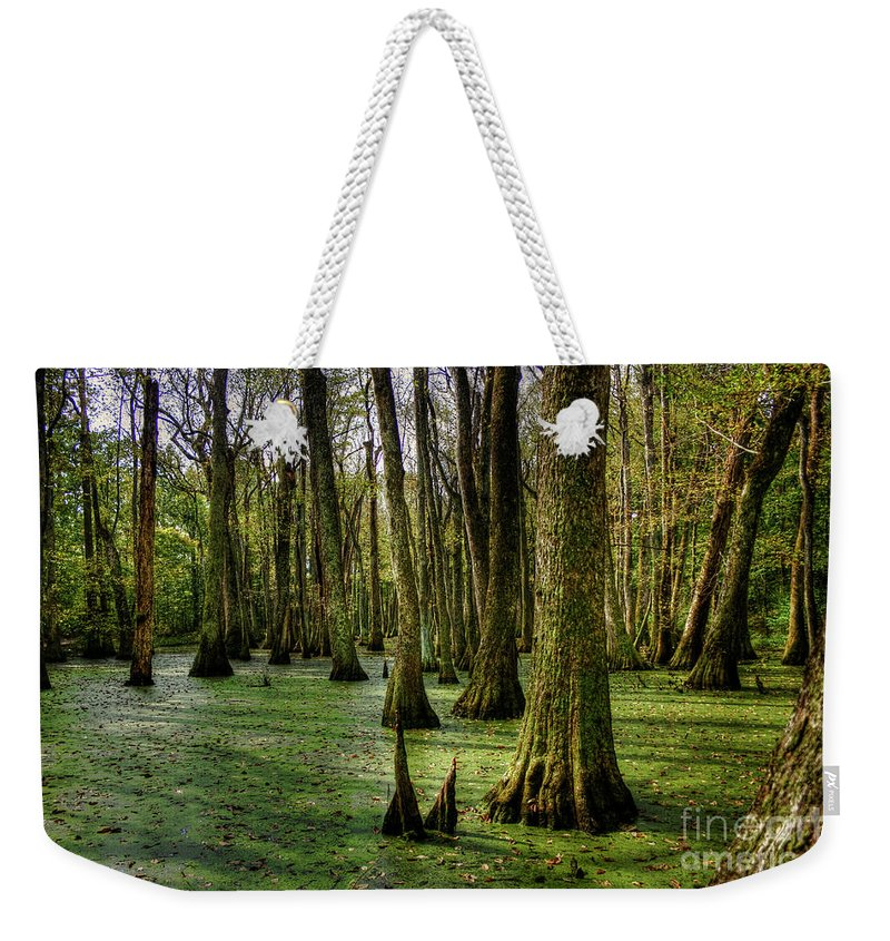 2009 Weekender Tote Bag featuring the photograph Trees In The Swamp by Larry Braun