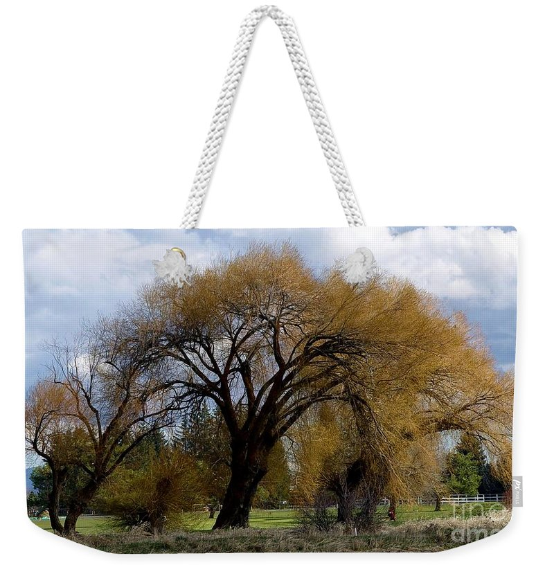 Oak Tree Weekender Tote Bag featuring the photograph Trees by Ron Bissett