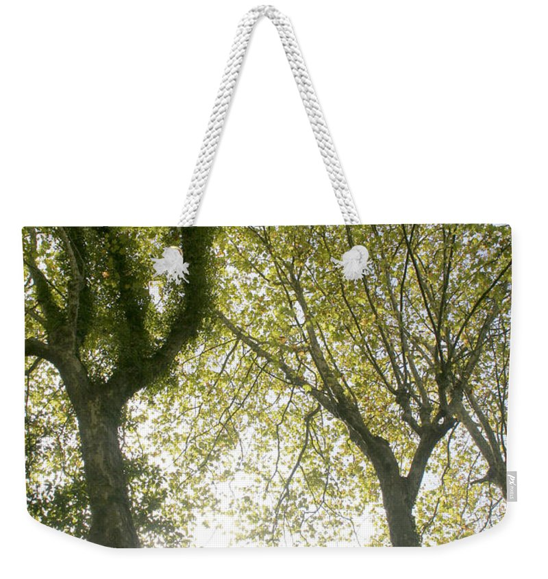 Olive Weekender Tote Bag featuring the photograph Trees by Vladi Alon