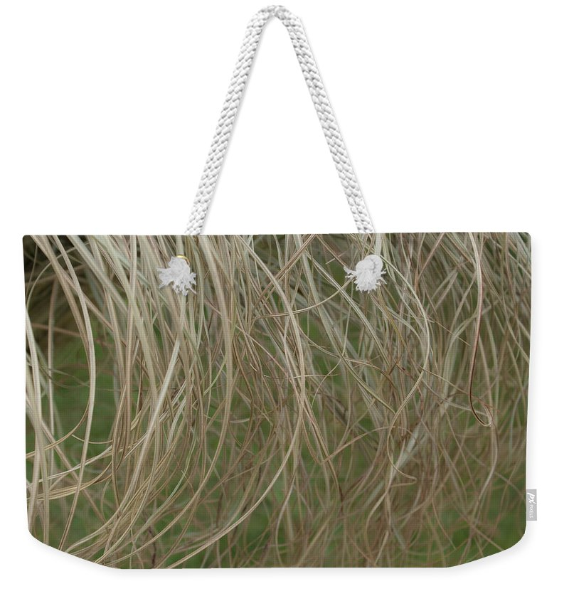 Tresses Weekender Tote Bag featuring the photograph Tresses by Douglas Barnett