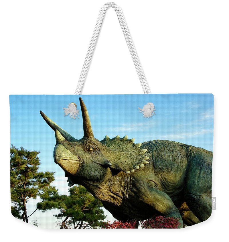 South Korea Weekender Tote Bag featuring the photograph Triceratops by Michele Burgess