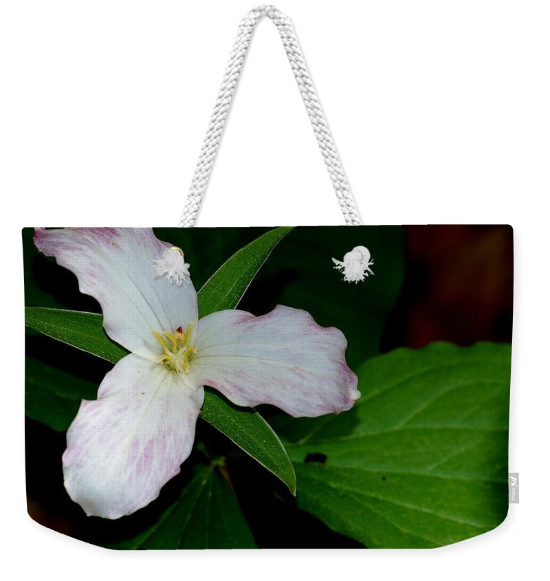 Landscape Weekender Tote Bag featuring the photograph Trillium by David Lane