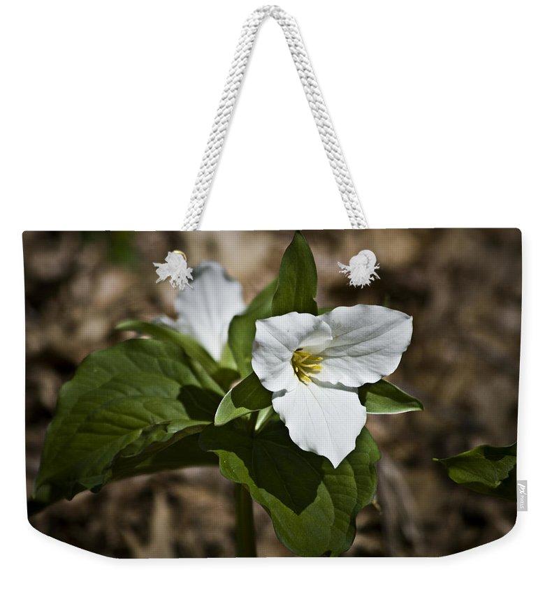 Trillium Weekender Tote Bag featuring the photograph Trillium Grandiflorum by Teresa Mucha