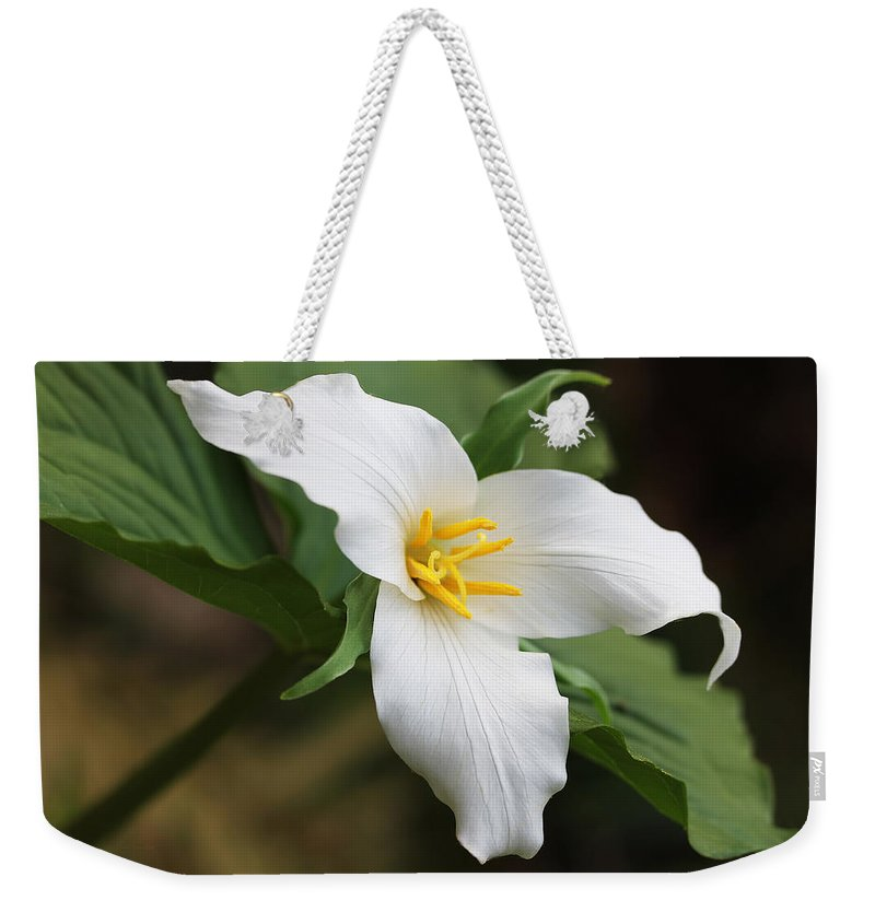 Trillium Weekender Tote Bag featuring the photograph Trillum Wild Flower by Jennie Marie Schell