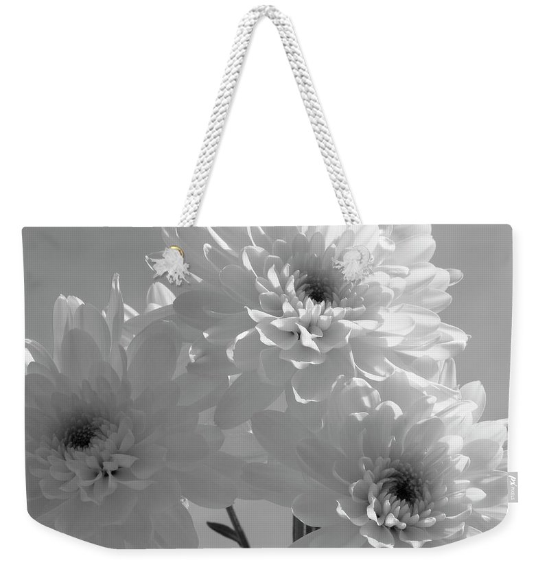 Nature Weekender Tote Bag featuring the photograph Trio by Shannon Turek