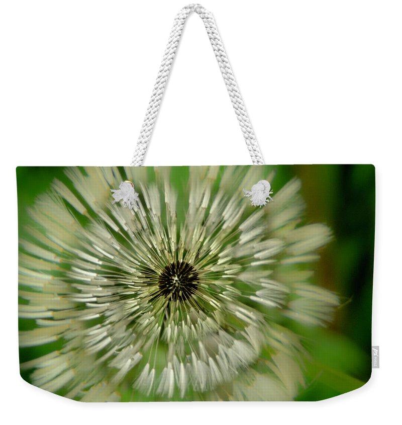 Dandelion Weekender Tote Bag featuring the photograph Triple Dandelion by Wolfgang Stocker