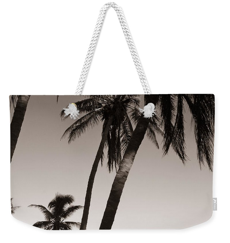 Black And White Photography Weekender Tote Bag featuring the photograph Triple Palms by Susanne Van Hulst