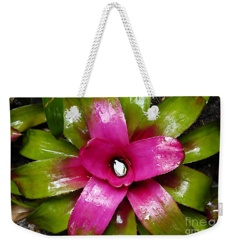 Tropical Weekender Tote Bag featuring the photograph Tropic Wonder by David Lee Thompson