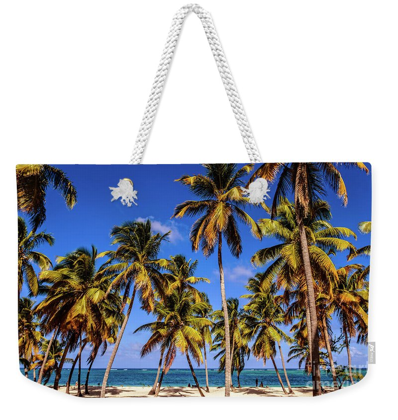 Tropical Weekender Tote Bag featuring the photograph Palms On The Beach by Viktor Birkus