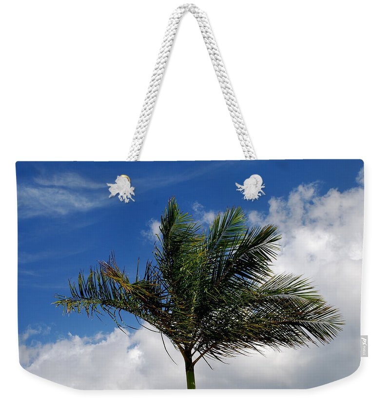 Palm Tree Weekender Tote Bag featuring the photograph Tropical Breeze by Gary Wonning