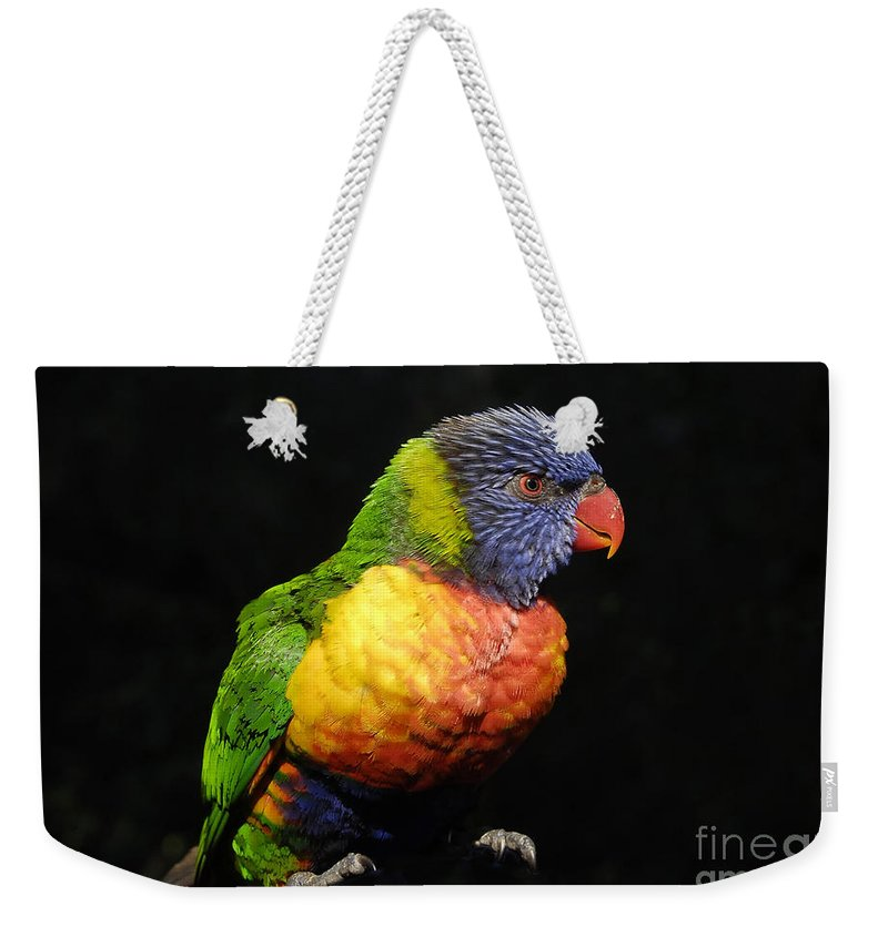 Tropical Weekender Tote Bag featuring the photograph Tropical Colors by David Lee Thompson