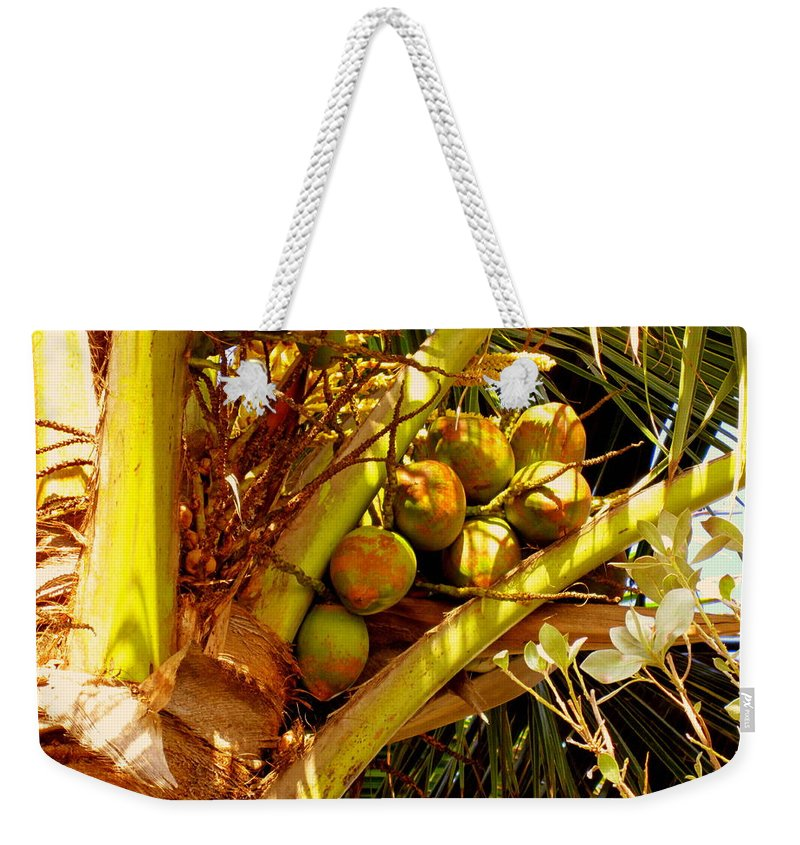 Coconuts Weekender Tote Bag featuring the photograph Tropical Dreams 1 by Susanne Van Hulst