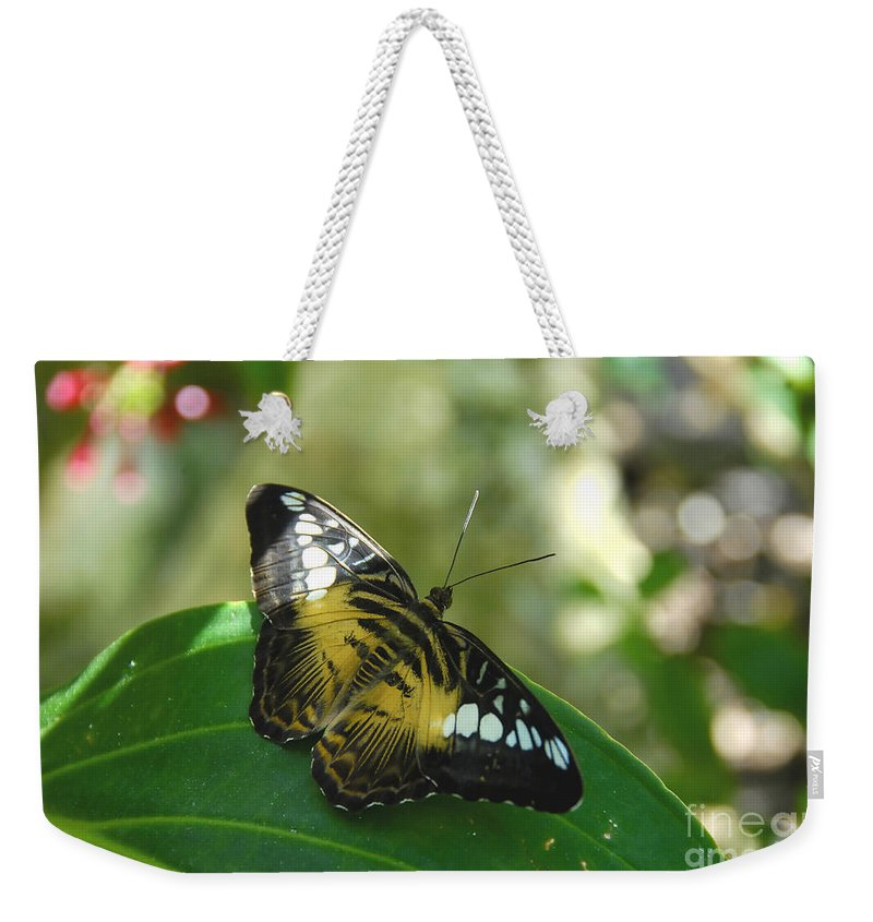 Butterfly Weekender Tote Bag featuring the photograph Tropical Garden Beauty by David Lee Thompson