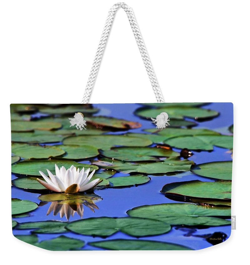 Water Lily Weekender Tote Bag featuring the photograph Tropical Water Lily by Christina Rollo