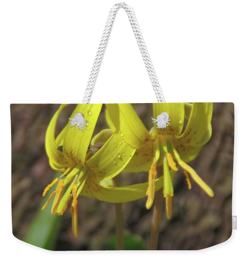 Flowers Weekender Tote Bag featuring the photograph Trout Lily 1068 by Guy Whiteley