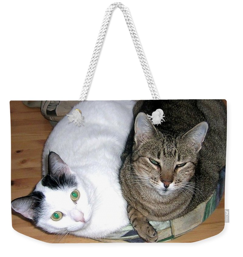 Cat Weekender Tote Bag featuring the photograph True Love by Valerie Ornstein