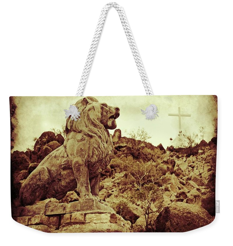 Alicegipsonphotographs Weekender Tote Bag featuring the photograph Tucson Lion by Alice Gipson
