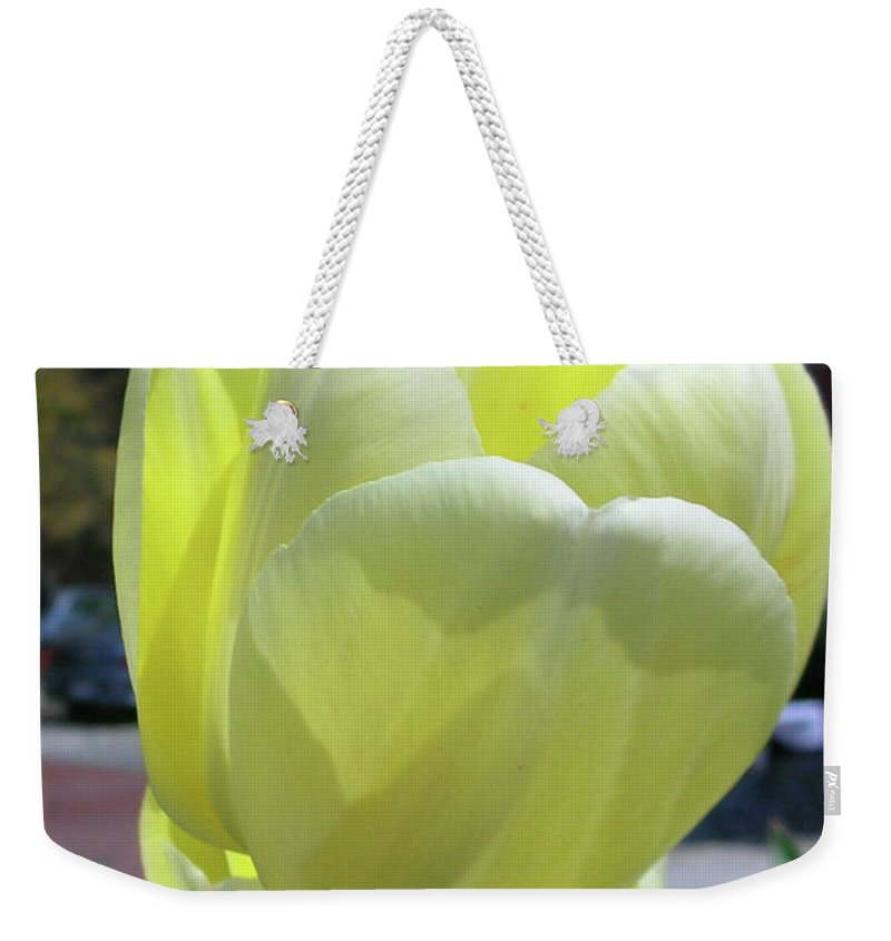 Flowers Weekender Tote Bag featuring the photograph Tulip 0761 by Guy Whiteley