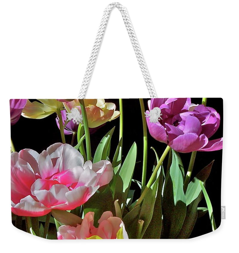 Flowers Weekender Tote Bag featuring the photograph Tulip 8 by Pamela Cooper