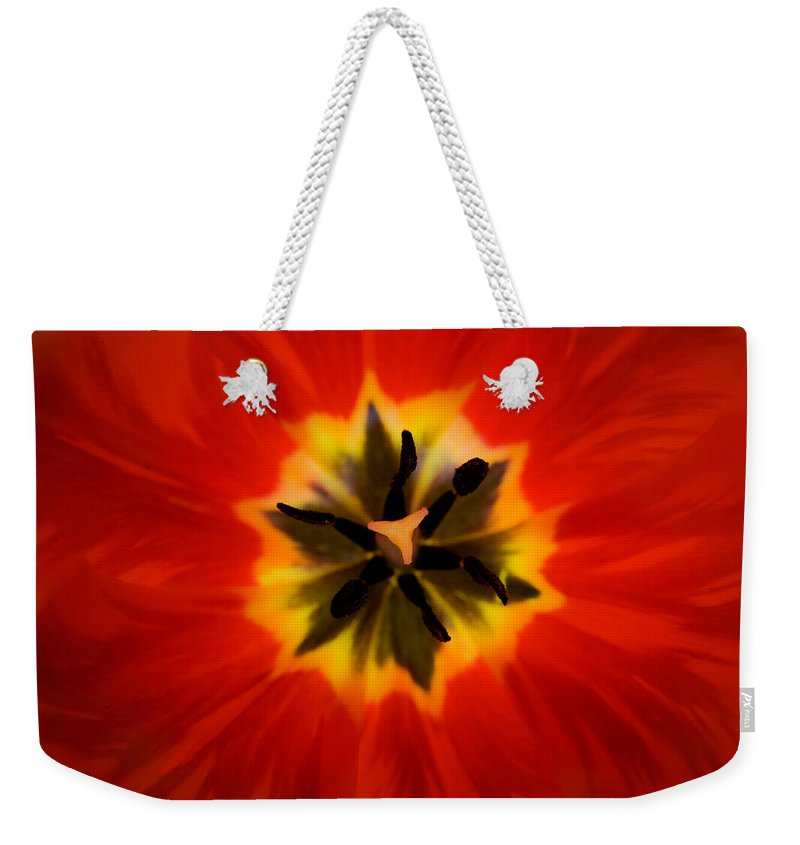 Tulip Weekender Tote Bag featuring the photograph Tulip Explosion Kaleidoscope by Teresa Mucha