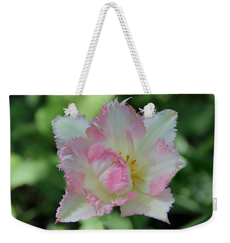 Tulip Galerie Poster Weekender Tote Bag featuring the photograph Tulip Galerie by Sergey Lukashin