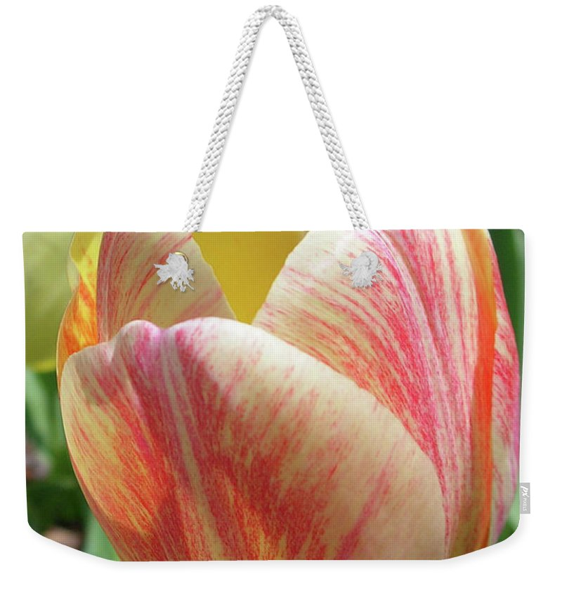 Flowers Weekender Tote Bag featuring the photograph Tulip by Guy Whiteley