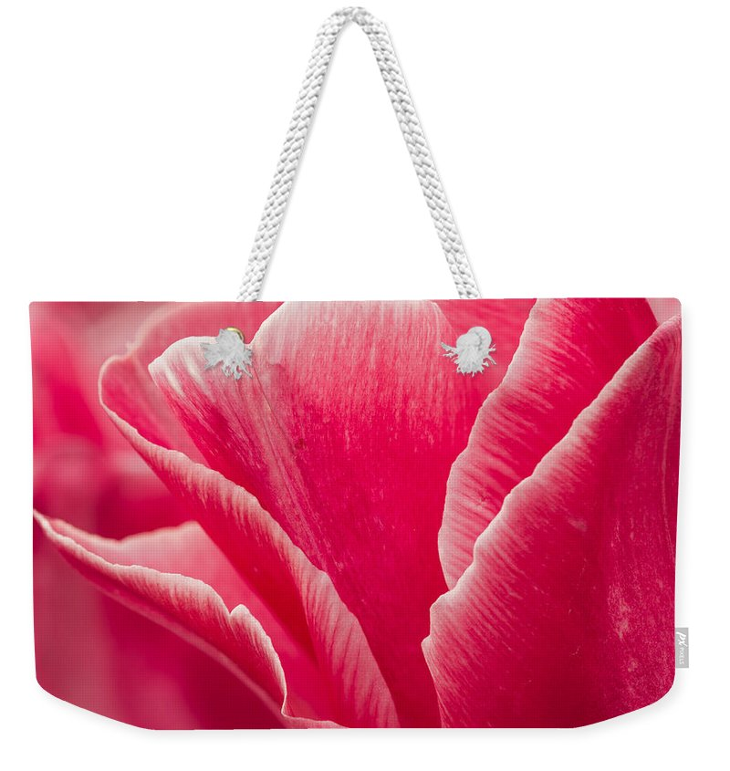 Tulip Weekender Tote Bag featuring the photograph Tulip Layers by Mary Jo Allen