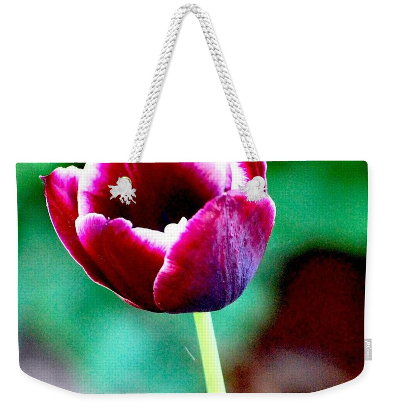 Digital Photo Weekender Tote Bag featuring the photograph Tulip Me by David Lane