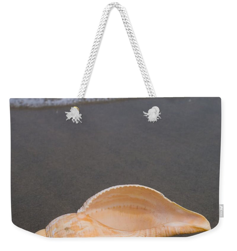 Tulip Shell Weekender Tote Bag featuring the photograph Tulip Shell by Anthony Totah