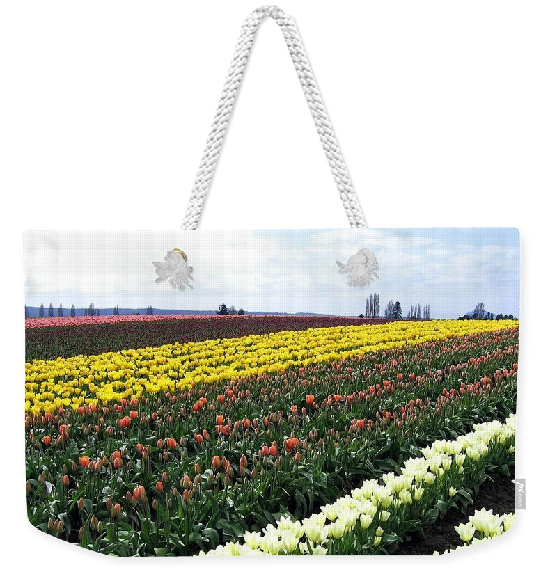 Agriculture Weekender Tote Bag featuring the photograph Tulip Town 11 by Will Borden