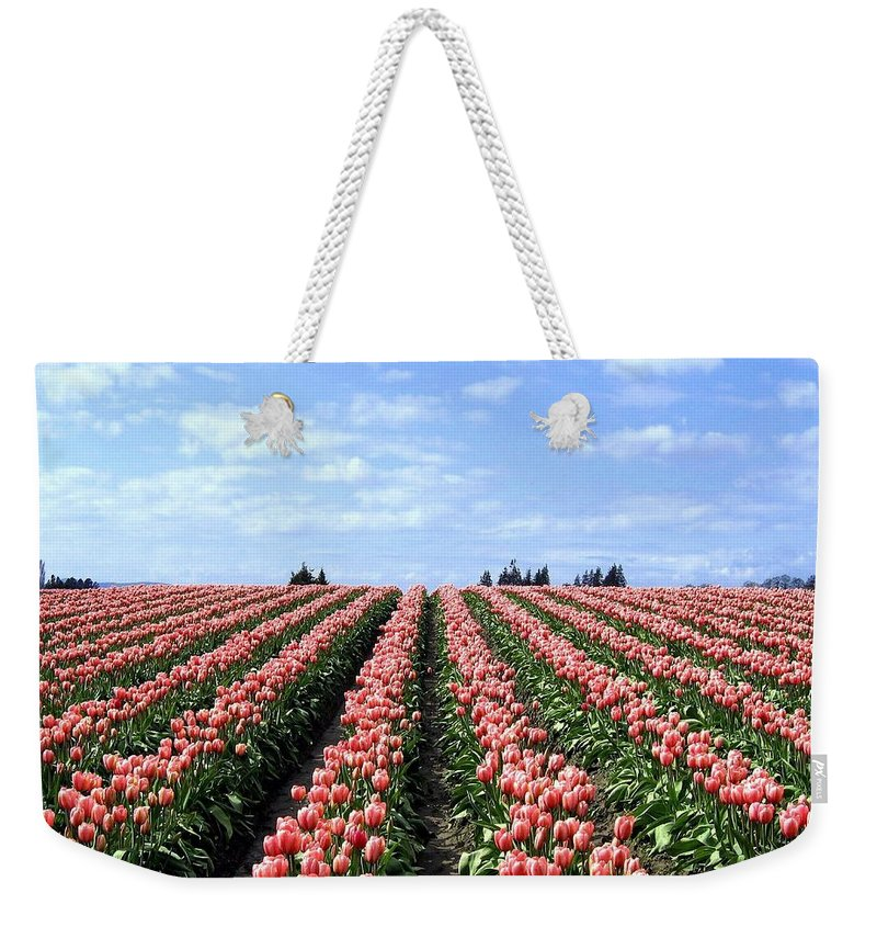 Agriculture Weekender Tote Bag featuring the photograph Tulip Town 12 by Will Borden