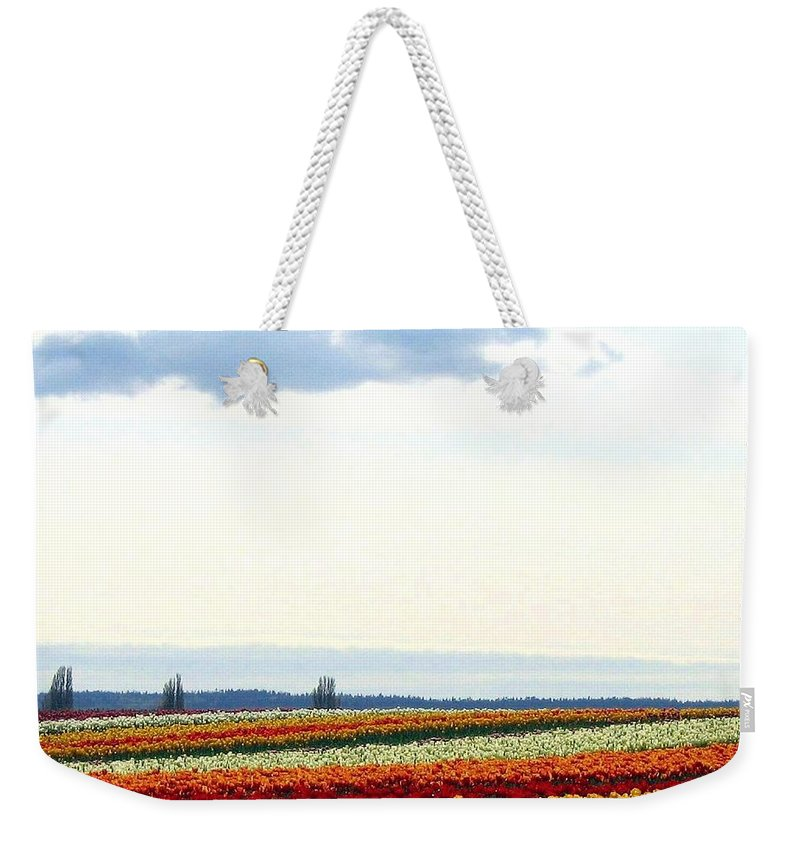 Agriculture Weekender Tote Bag featuring the photograph Tulip Town 13 by Will Borden