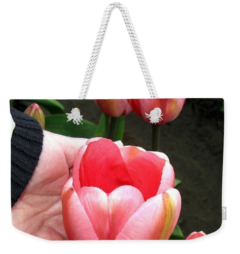 Agriculture Weekender Tote Bag featuring the photograph Tulip Town 15 by Will Borden