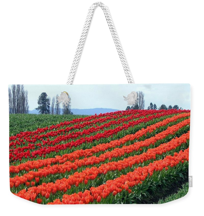 Agriculture Weekender Tote Bag featuring the photograph Tulip Town 18 by Will Borden