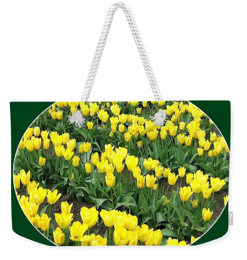 Agriculture Weekender Tote Bag featuring the photograph Tulip Town 2 by Will Borden