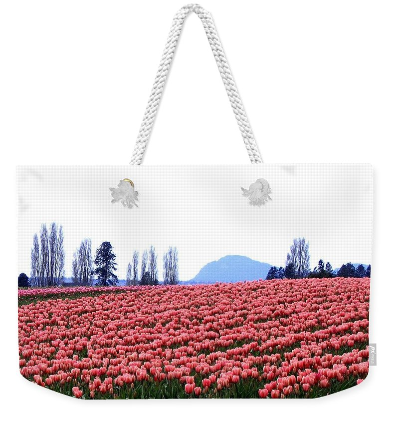 Agriculture Weekender Tote Bag featuring the photograph Tulip Town 3 by Will Borden