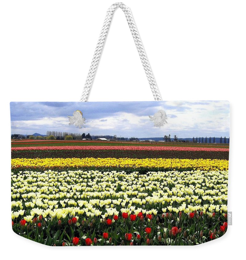 Agriculture Weekender Tote Bag featuring the photograph Tulip Town 4 by Will Borden