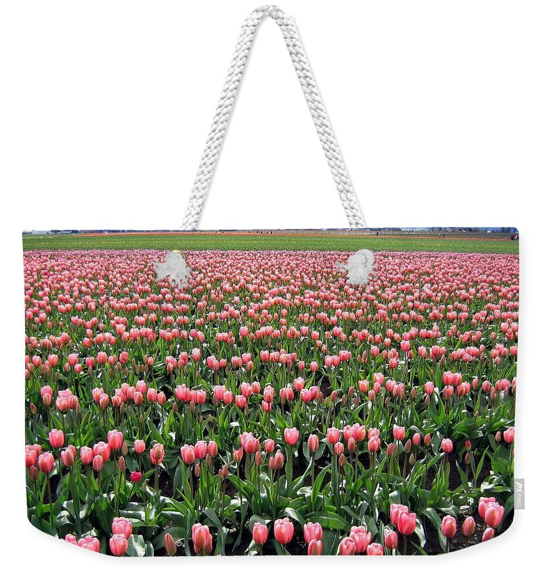 Agriculture Weekender Tote Bag featuring the photograph Tulip Town 5 by Will Borden
