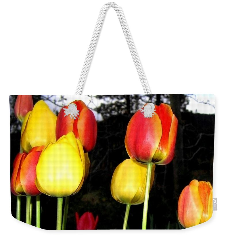 Tulips Weekender Tote Bag featuring the photograph Tulipfest 9 by Will Borden