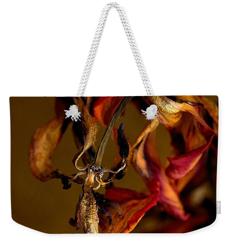 Red Tulip Weekender Tote Bag featuring the photograph Tulip's Demise - A Natural Abstract by Lois Bryan
