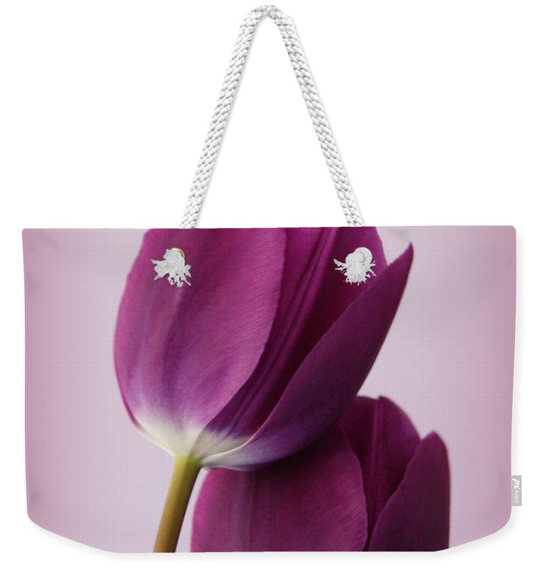 Tulip Weekender Tote Bag featuring the photograph Tulips by Diane Reed
