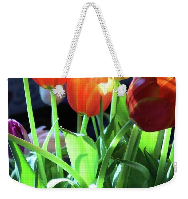 Tulips Weekender Tote Bag featuring the photograph Tulips In The Light by Brenda Ackerman