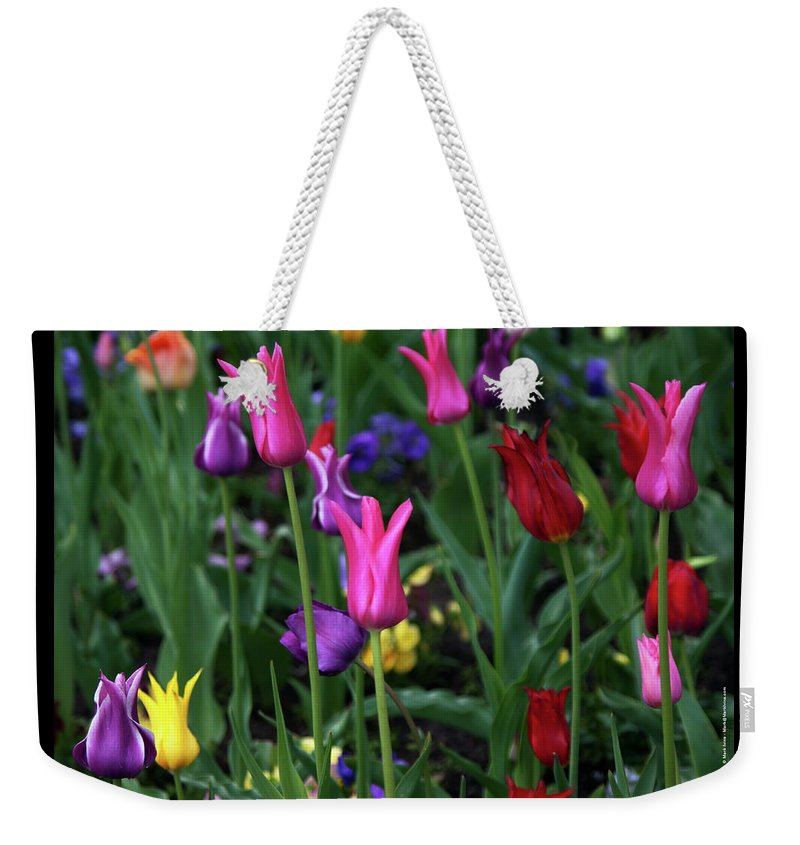 Tulips Weekender Tote Bag featuring the photograph Tulips by Mark Ivins
