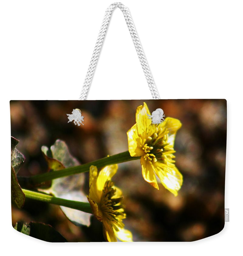 Wild Flowers Weekender Tote Bag featuring the photograph Tundra Rose by Anthony Jones