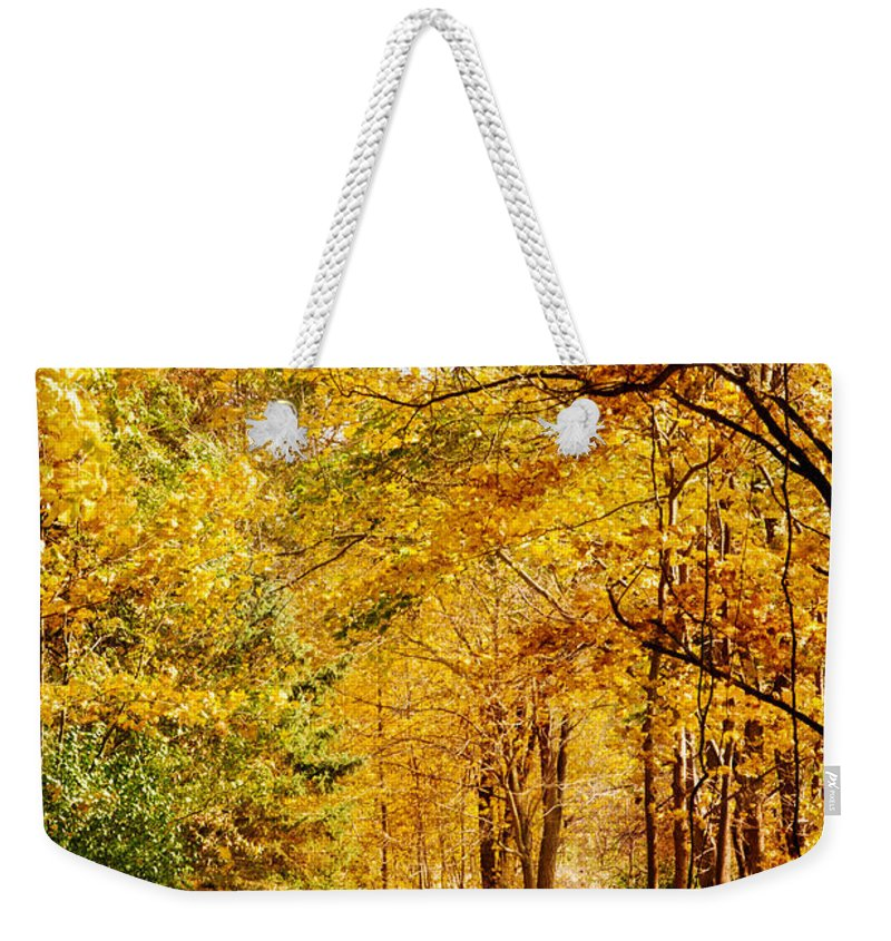 Autumn Weekender Tote Bag featuring the photograph Tunnel Of Gold by Sharon McConnell