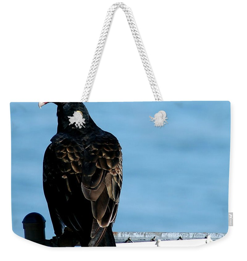 Clay Weekender Tote Bag featuring the photograph Turkey Buzzard by Clayton Bruster